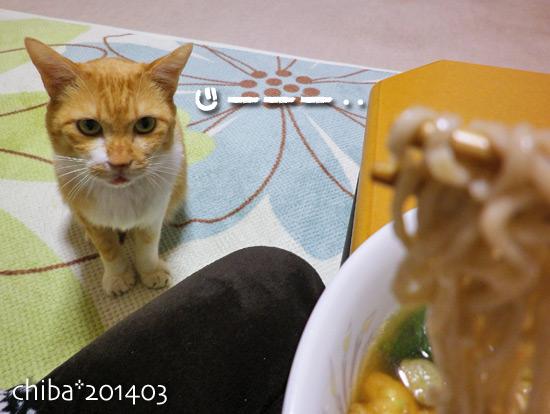 chiba14-03-109.jpg