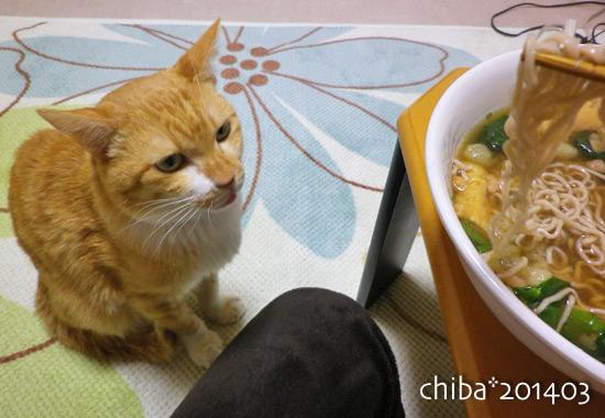 chiba14-03-114.jpg