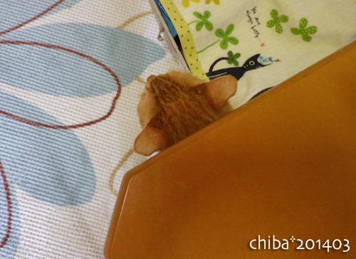 chiba14-03-121.jpg