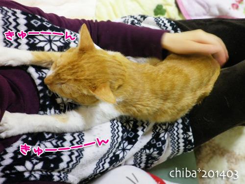 chiba14-03-145.jpg