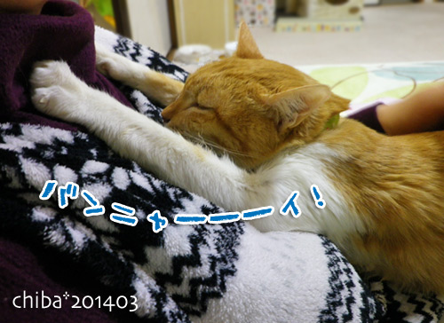 chiba14-03-146.jpg