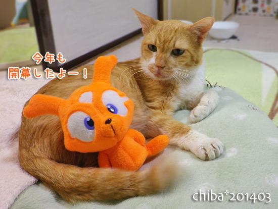 chiba14-03-152.jpg