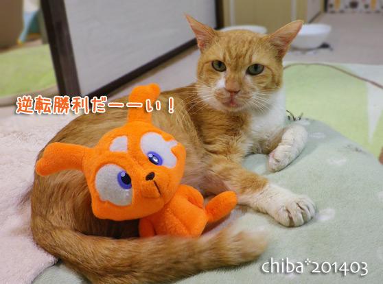 chiba14-03-153.jpg