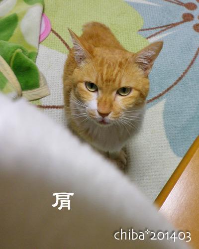 chiba14-03-188.jpg