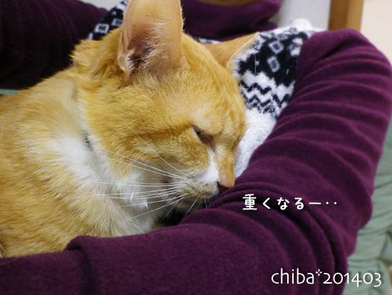chiba14-03-214.jpg