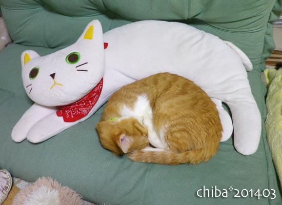 chiba14-03-216.jpg