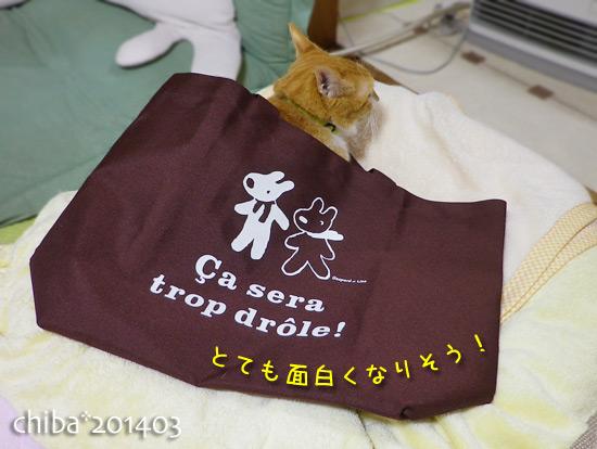 chiba14-03-72.jpg