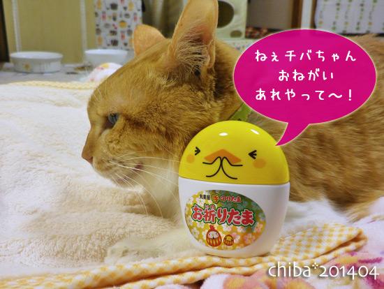 chiba14-04-01.jpg