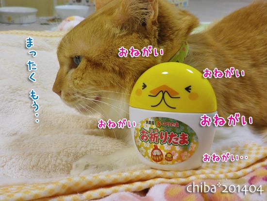 chiba14-04-02.jpg