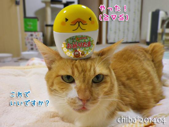 chiba14-04-04.jpg