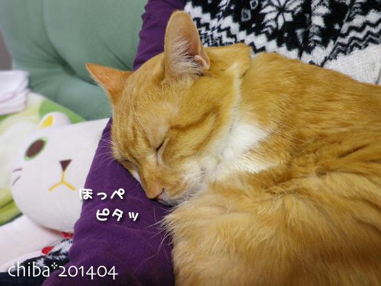 chiba14-04-26.jpg