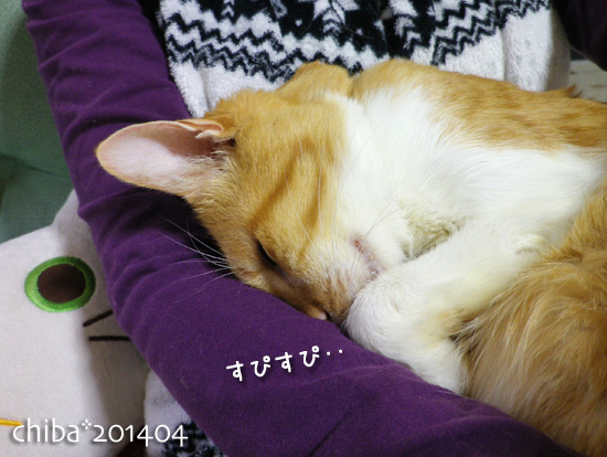chiba14-04-30.jpg