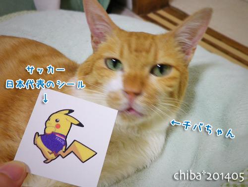 chiba14-05-135x.jpg
