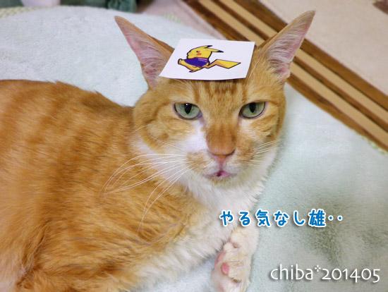 chiba14-05-139.jpg