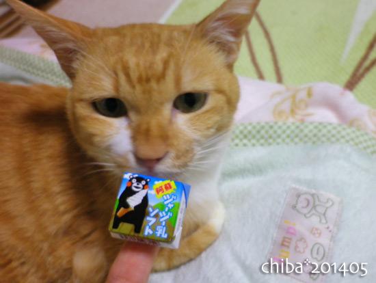 chiba14-05-39.jpg