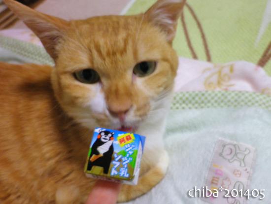 chiba14-05-40.jpg