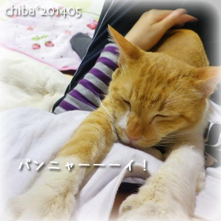 chiba14-05-51.jpg