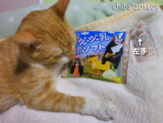 chiba14-05-54.jpg