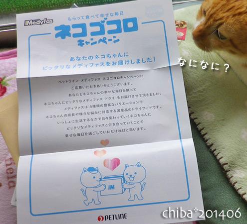 chiba14-06-120.jpg