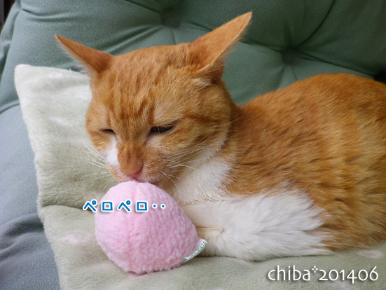 chiba14-06-132.jpg
