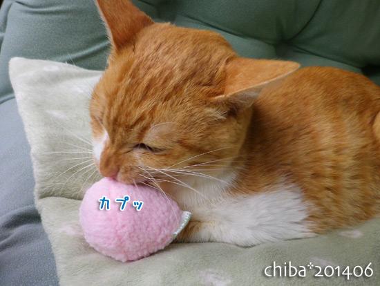 chiba14-06-135.jpg