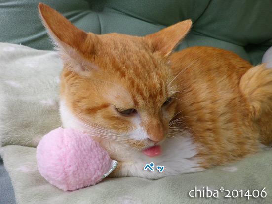 chiba14-06-136.jpg