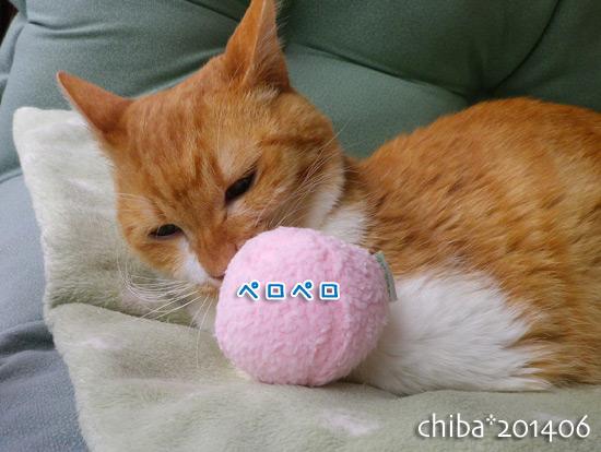 chiba14-06-137.jpg