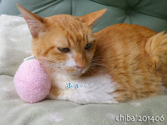 chiba14-06-138.jpg