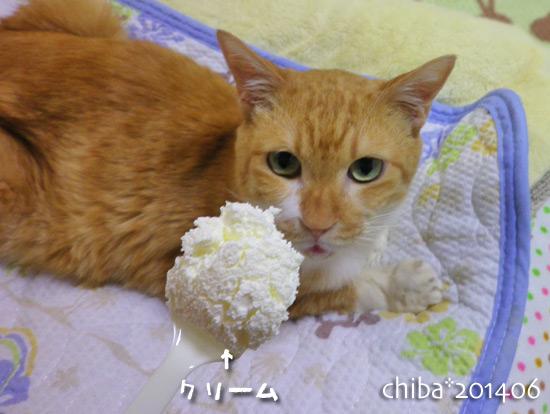 chiba14-06-21.jpg