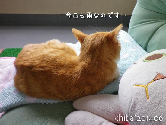 chiba14-06-85x.jpg