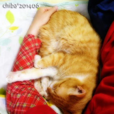 chiba14-06-90.jpg