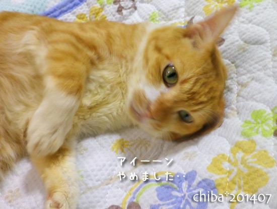 chiba14-07-10.jpg