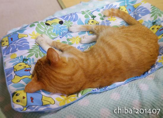 chiba14-07-142.jpg