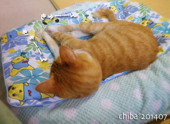 chiba14-07-143.jpg