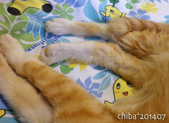 chiba14-07-146.jpg