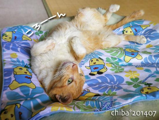 chiba14-07-150.jpg