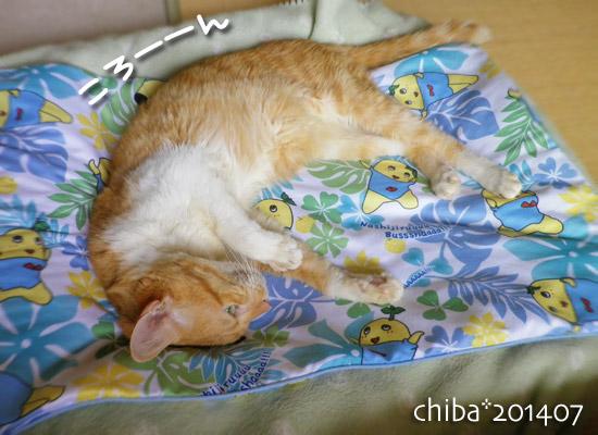 chiba14-07-160.jpg