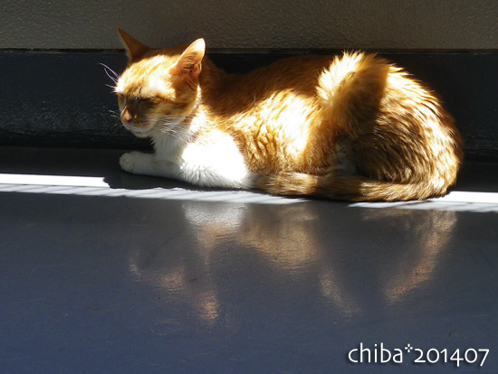 chiba14-07-68.jpg