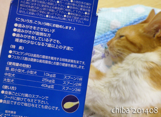 chiba14-08-29.jpg