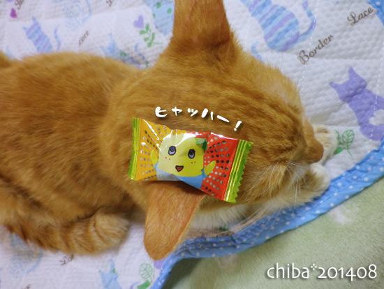 chiba14-08-94.jpg