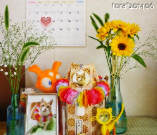 tora14-06-02.jpg