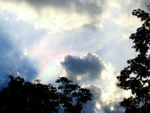 .。☆・。. Moonlight Blessing .。o.:・