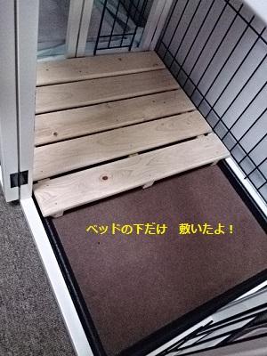 20140710d.jpg