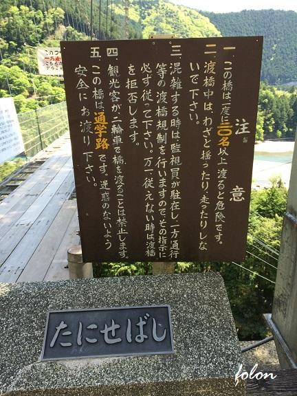 谷瀬の吊り橋~01