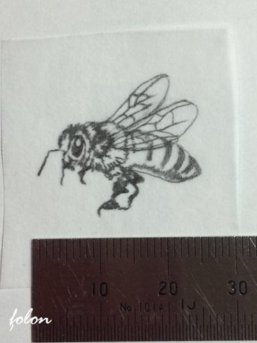 ミツバチ下絵01