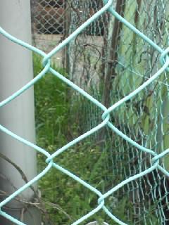 フェンスの写真1