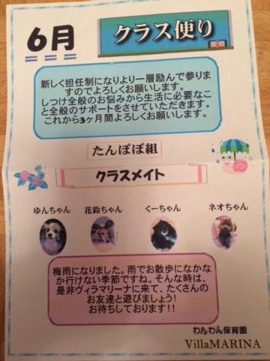 20140608_08.jpg