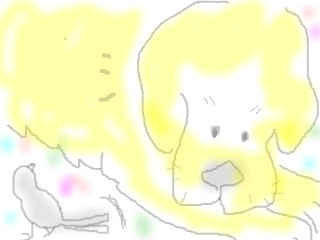 snap_rakumame_20142515598.jpg