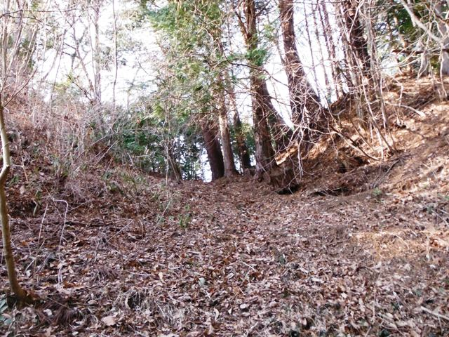 矢草城(阿南町) (62)