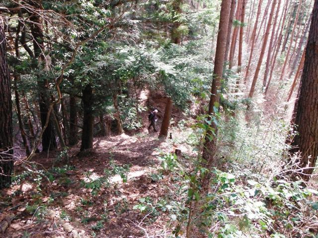 八幡城(阿南町) (7)